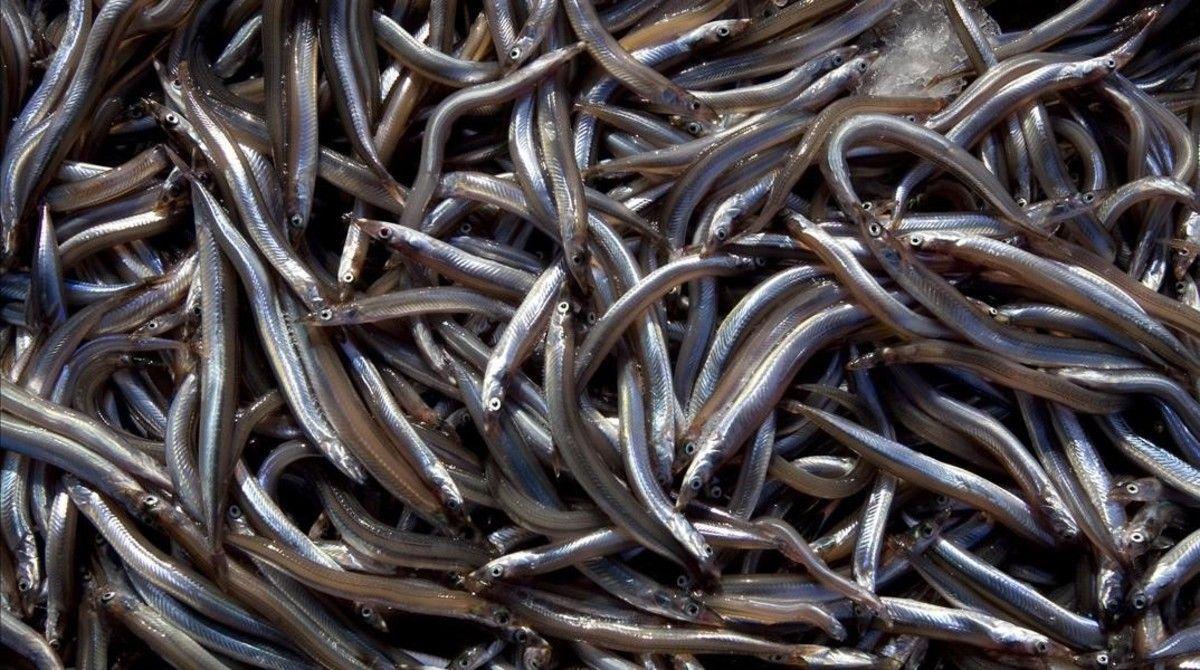 El Sonso: la delicatessen de Arenys de Mar